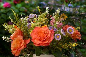 flowers-2719357_1280