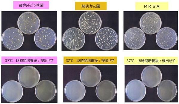 サンテクガードの抗菌力試験
